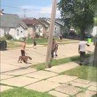 Yo wtf ?!?!? Guy unleashes dog during fight. (Sorry no audio)
