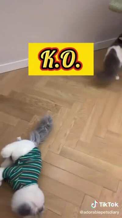 Double K.O.