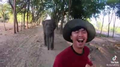 Out for a morning run with a baby elephant