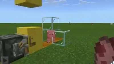 My swine people need me