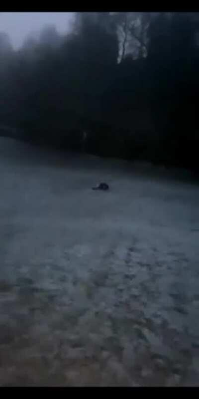 WCGW trying to go down a hill