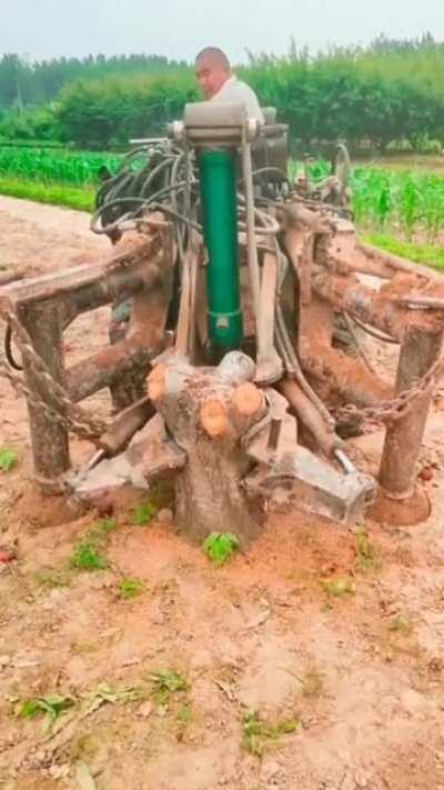 Удаление корней