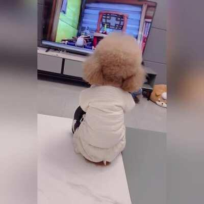 my 3 years old daughter watching tv