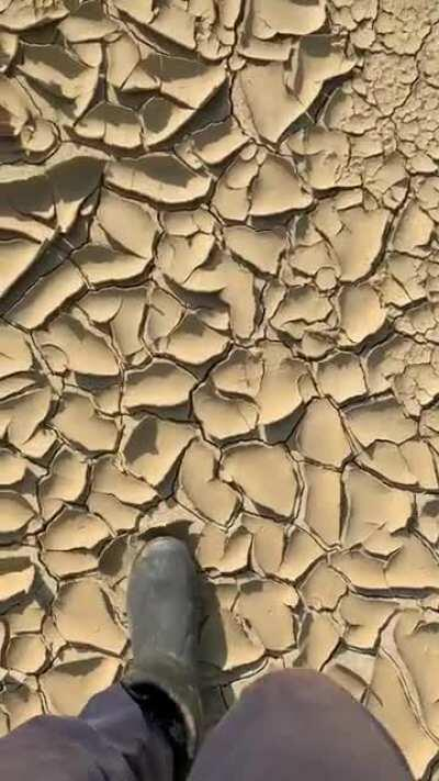 [UNINTENTIONAL] Dry mud cracking
