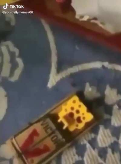 Don't touch the cheese