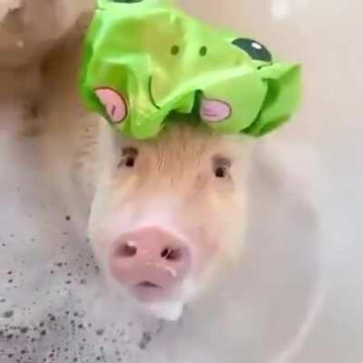 Guess, I'm a frog now..