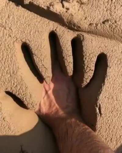 soft mud