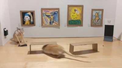 As promised, this is the full video of our gerbils visiting the museum. No gerbils or gallery assistants were harmed in the making of this.