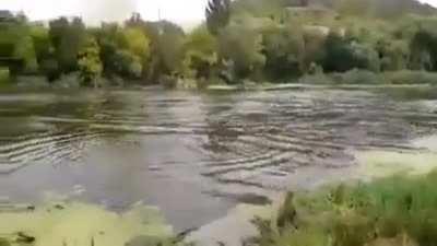 Peaceful day fishing