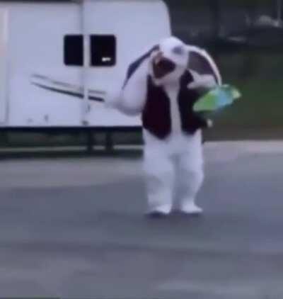 Creepy costumes always get me