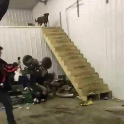 WCGW riding the quad down the stairs