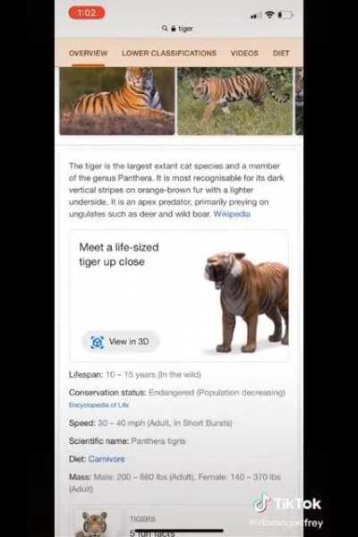 Fun with AR tigers