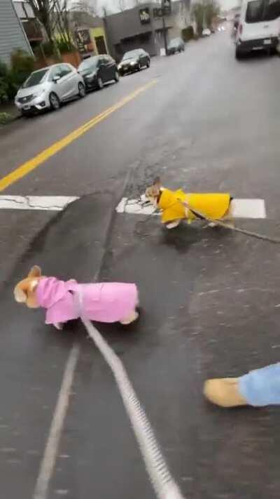 Matchy outfits a must for a rainy day.