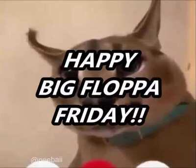 these bitches love floppa