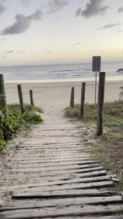 4:30am in Queensland: Summer is coming 😍