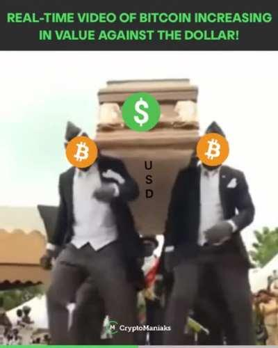 Damn, are we seeing the official funeral of the USD right now! Bitcoin 👑