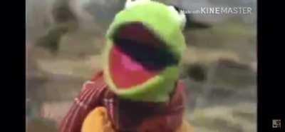 Kermit dies in a tragic bike accident