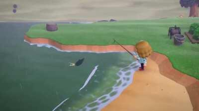 Catching a shark in animal crossing