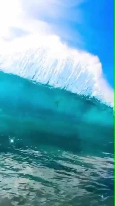 Big wave surfing!!
