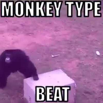 Monke type beat