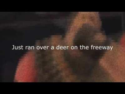 just ran over a deer on the freeway