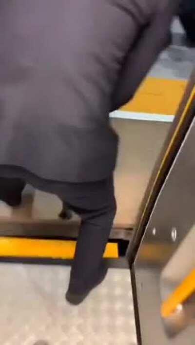 Cat escorted out of high speed train after being caught without ticket and no mask.