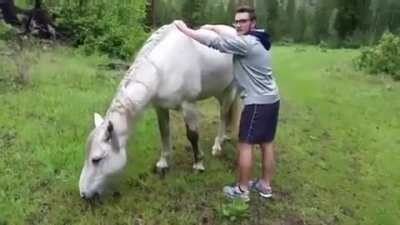 WCGW trying to ride a wild horse