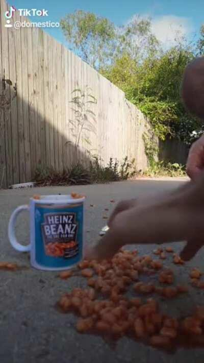 Me and the bois found our beanz
