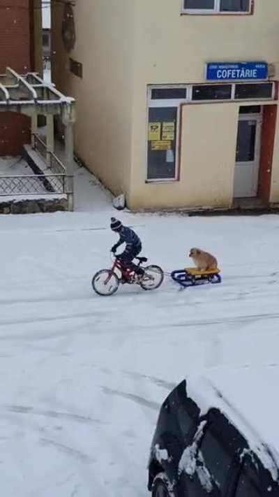 Kid from Romania enjoying the snow with his dog :)