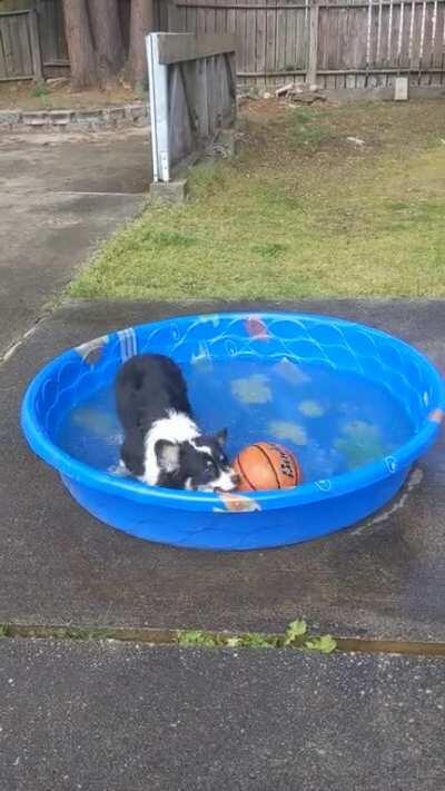 Splish splashing in the pool