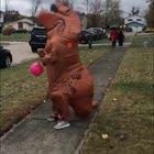 Wind...natural predator of the T-Rex.