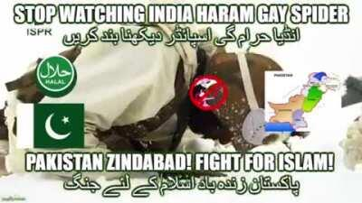 PAKISTAN IS DESTROY GAY SPIDER HARAM HOMOTEL پاکستان میں اسپائیڈر حرام ہوٹل کو تباہ کر رہا ہے