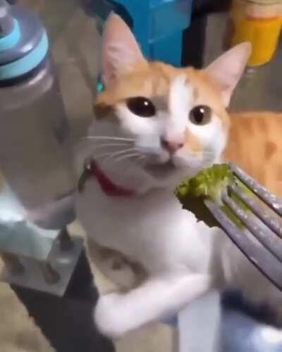 Reaction to broccoli