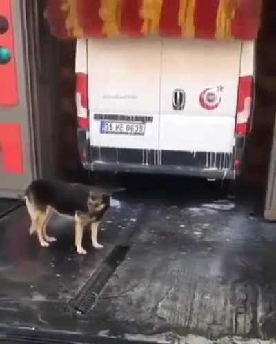 'Yeaaahhhh that's the spot!'