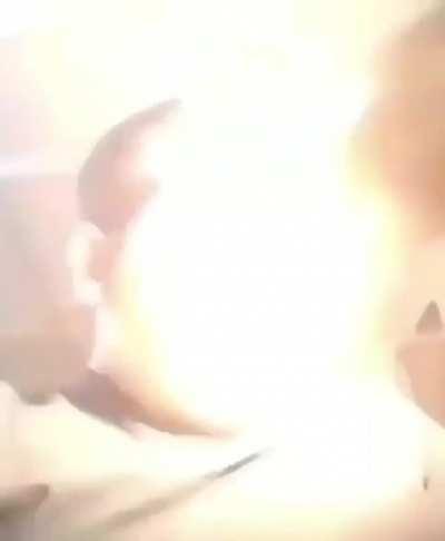 perfectlycutscreams - Video #0791