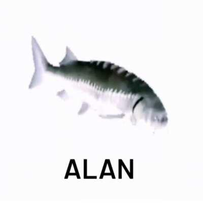 Upvote si eres un verdadero Alan