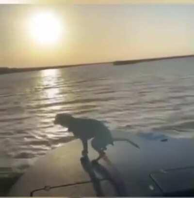 WCGW Filming a Sunset