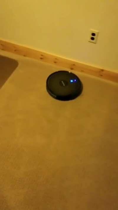 Robot vacuums are mean :(