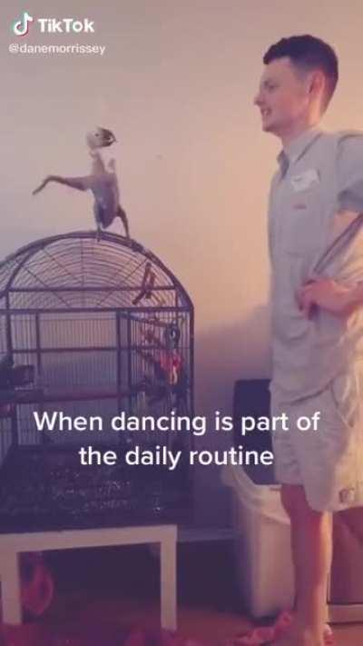 Naked bird yoga