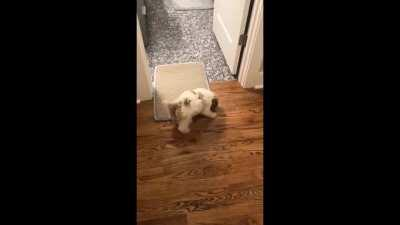 Floor mats are enemies