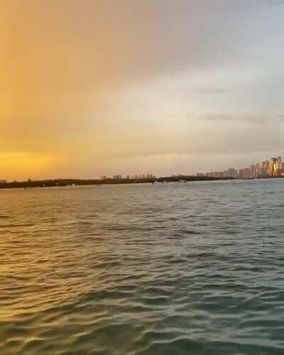I'll never top this video. Amazing dolphin encounter at Haulover