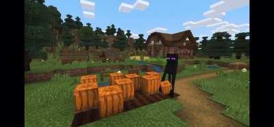 Rule 3 of creating a Minecraft mob