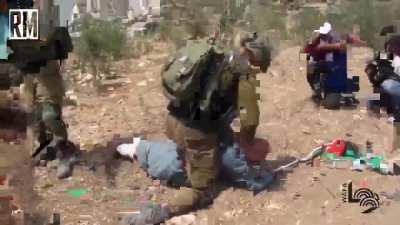 Israeli forces assault a Palestinian elderly for defending his land from confiscation