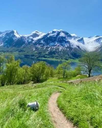 🔥 Epic Norwegian summer paradise