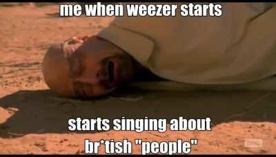 british weezer fans be like :