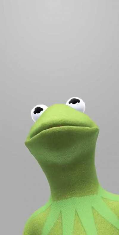 Perfectly Cut Kermit