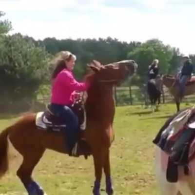 HMFT after I get bodyslammed by a horse