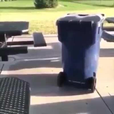 Just a normal trash container thing