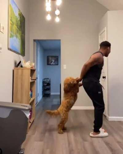 Dancing with the pupper