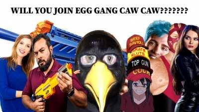 ONLY ENLIGHTENED BIRDS CAN ENTER EGG GANG CAW CAW